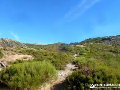 Pico Santuy; El Cerrón; viajes organizados para grupos; viaje camino de santiago bosques en otoño